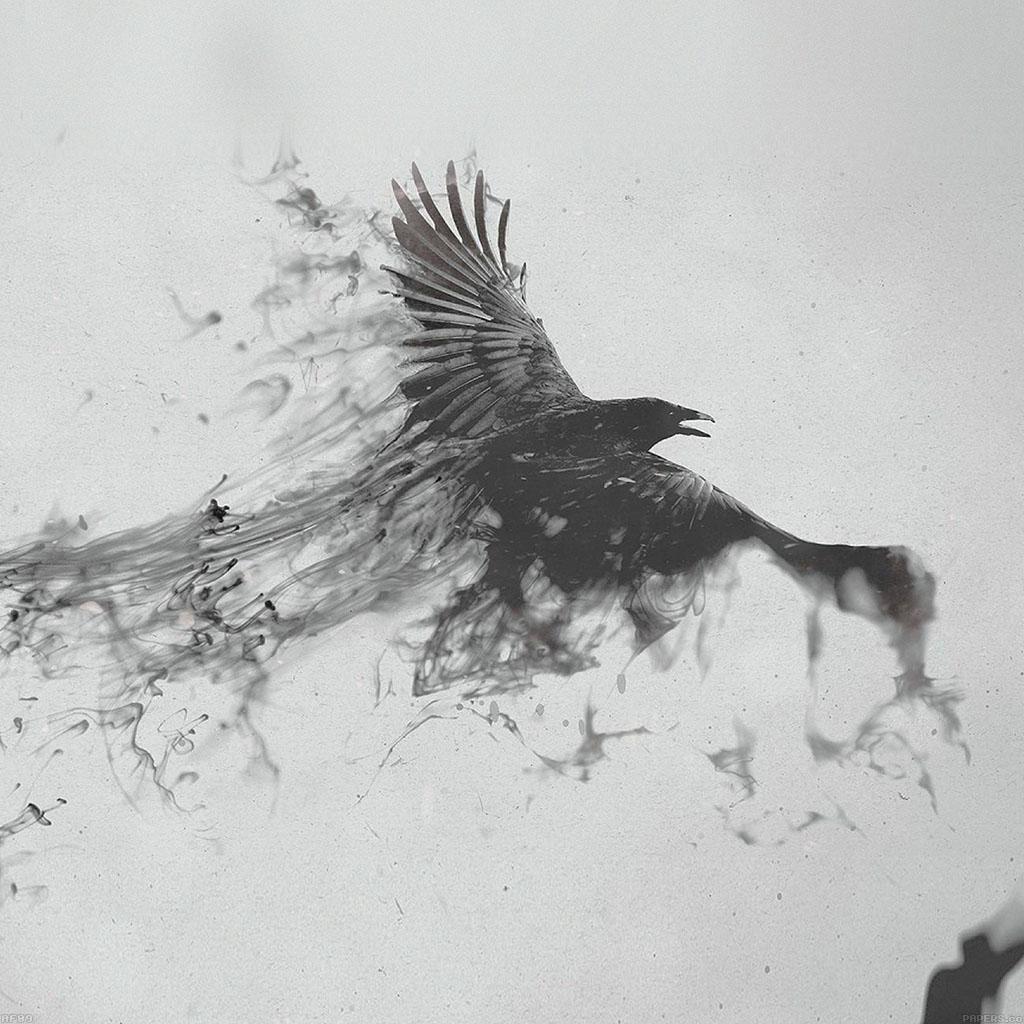 wallpaper-af09-black-bird-smoke-art-illust-wallpaper