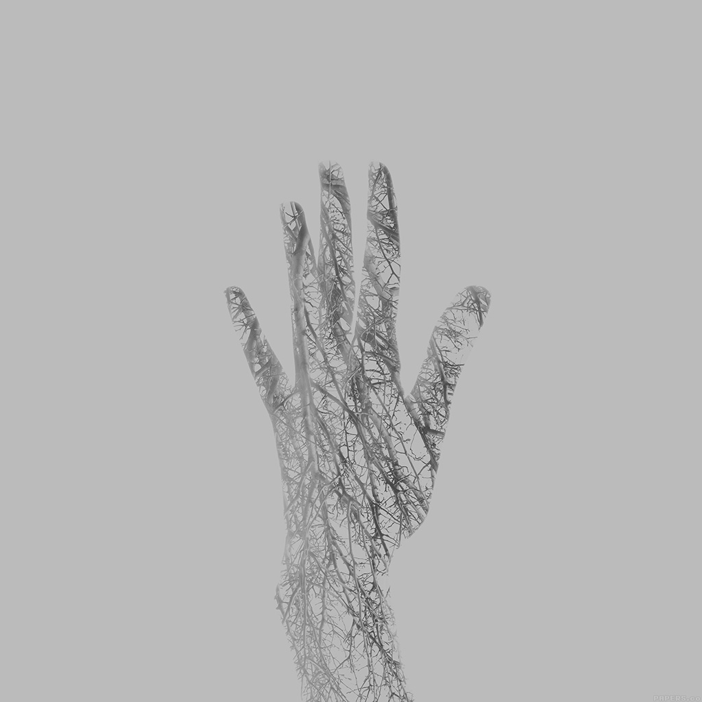 wallpaper-ag00-holleyandchris-white-branched-out-hand-nature-wallpaper