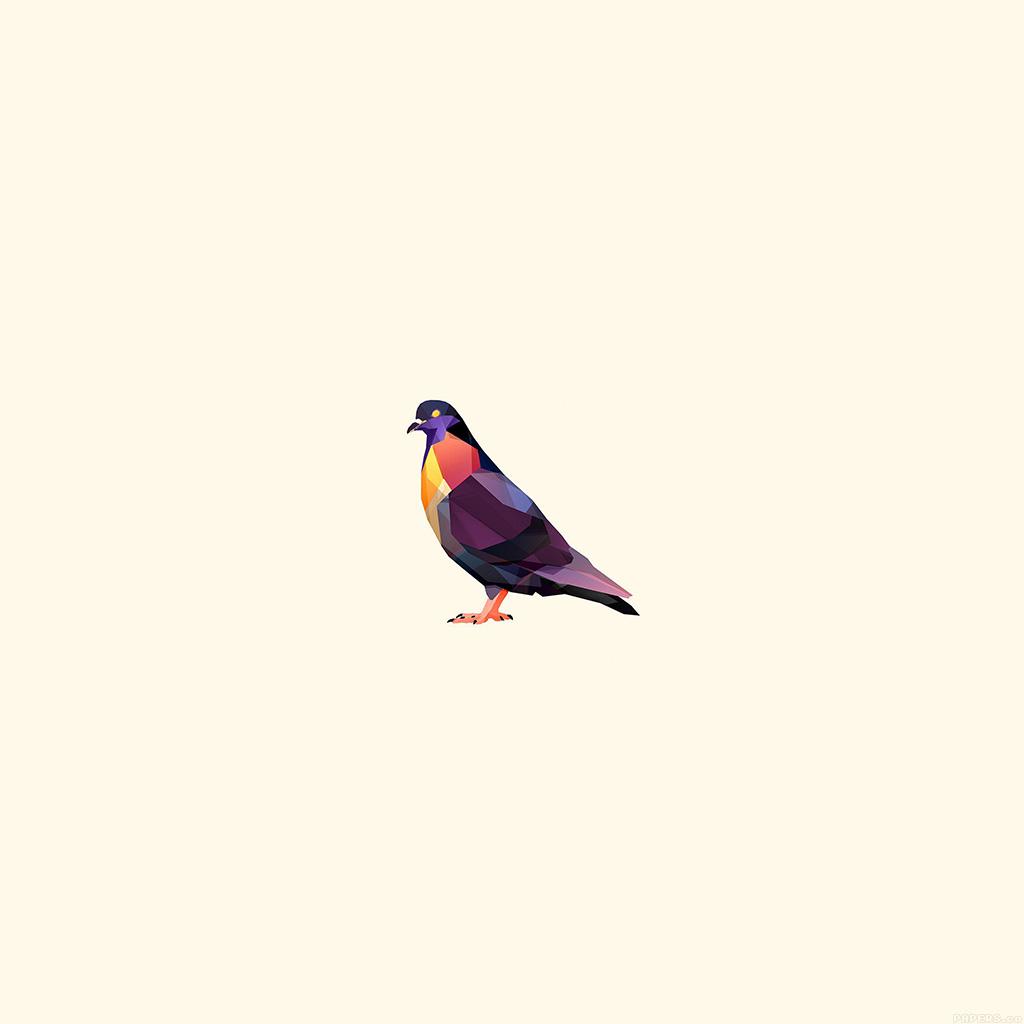 wallpaper-aj50-minimal-pigeon-bird-illust-art-wallpaper
