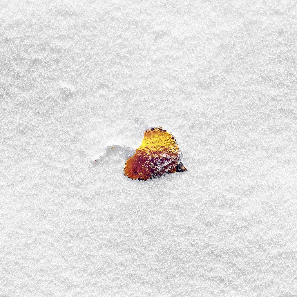 wallpaper-mb62-wallpaper-boo-201-snow-leaf-wallpaper