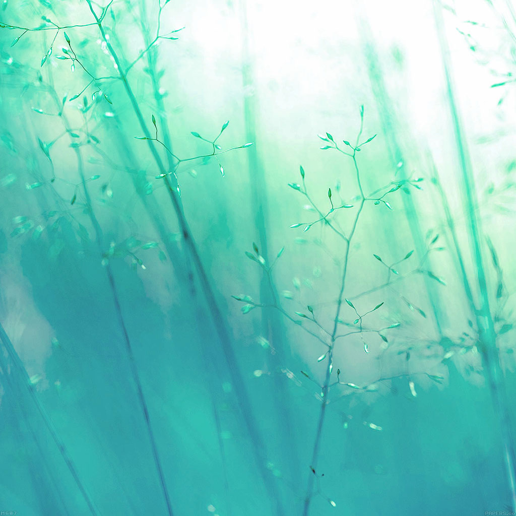 wallpaper-mg07-lg-g3-weed-green-flower-nature-wallpaper