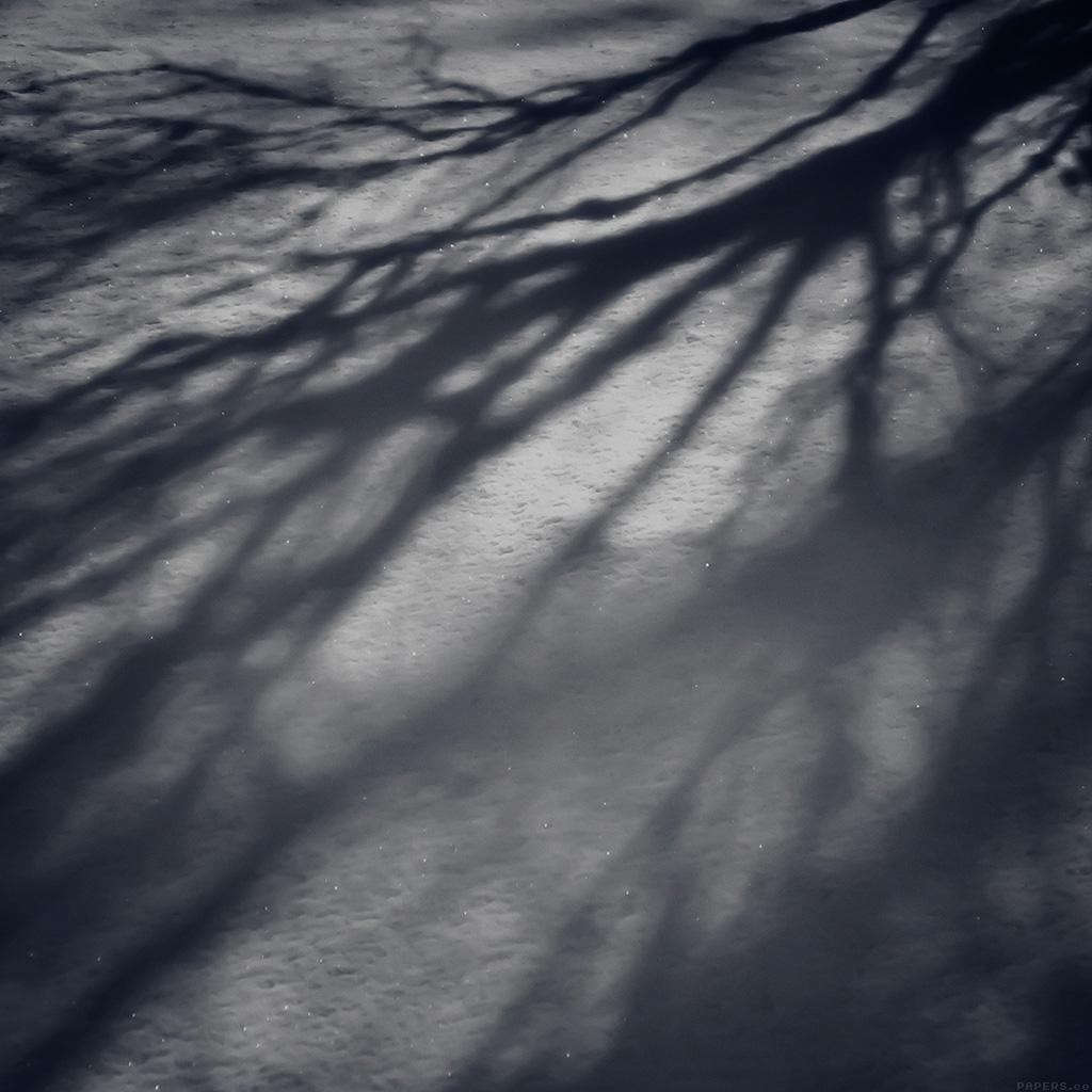 wallpaper-mi65-snow-shadow-winter-tree-nature-wallpaper