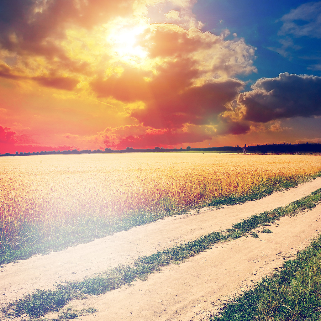 wallpaper-mm01-hot-sunny-day-awesome-instagram-look-nature-farm-wallpaper