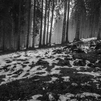 papers.co-mq54-mountain-snow-woods-nature-dark-bw-6-wallpaper-1
