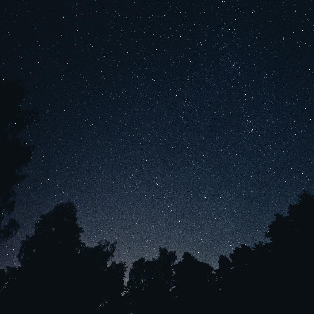 wallpaper-mt40-starry-night-sky-star-galaxy-space-dark-wallpaper