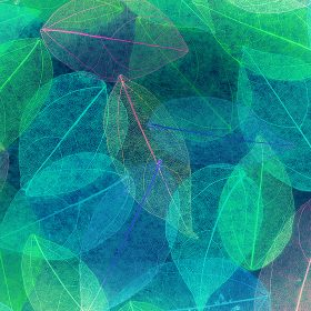 vm24-color-blue-leaf-art-fall-nature-pattern