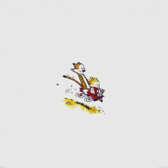 ANDREWS MCMEEL PUBLISHING CALVIN AND HOBBES